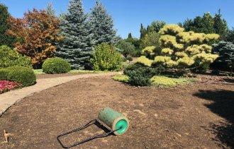 Второй этап реконструкции газона