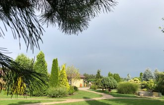 Реконструкция газона в саду.