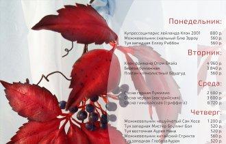 ВНИМАНИЕ! В питомнике Розовый Сад сезонные акции